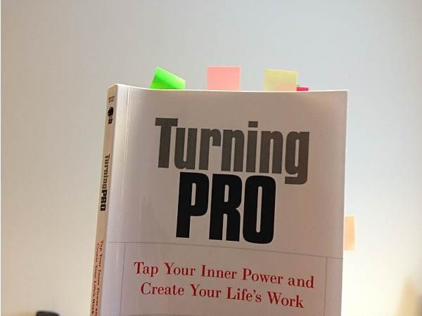 turning pro is an awesome book about becoming a professional at what you're doing in life