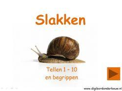 Digibordonderbouw  Digibordles Slakken tellen 1 - 10 en de begrippen kleinste, grootste en middelste http://digibordonderbouw.nl/index.php/component/jdownloads/viewcategory/355?Itemid=