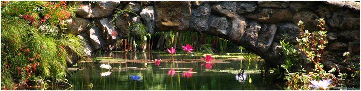17 best images about botanical gardens around the world on - Mckee botanical gardens vero beach ...