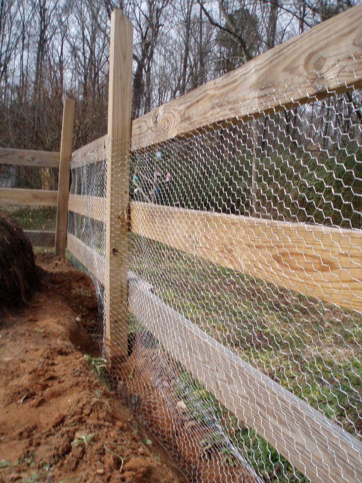 Inexpensive Garden Fence