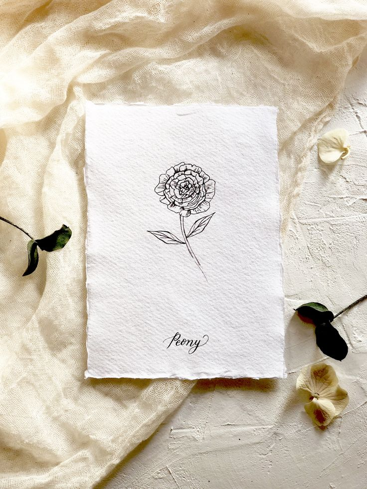 Botanical illustration art print. Modern florals. The peony- flower of wealth.