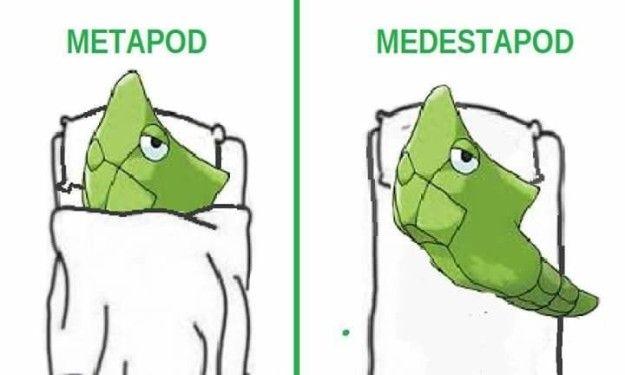 Y así Metapod. | 21 Memes de Pokémon Go que te matarán de risa porque los…
