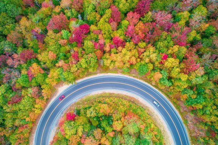 "DECEMBER 7, 2017AROUND THE BEND  Leaves turn into an autumnal rainbow along the Kancamagus Highway in New Hampshire. ""This is my favorite place on the whole scenic route,"" says Your Shot photographer Manish Mamtani. ""I always fly my drone here to capture the curve of the road and moving cars.""  PHOTOGRAPH BY MANISH MAMTANI,"