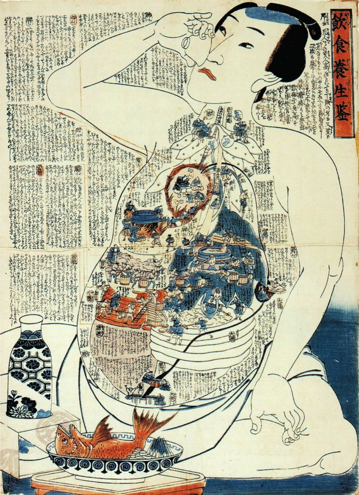 Dietary life rules / Inshoku yôjô kagami by Utagawa Kunisada || It explains ill effects of intemperance & functions of organs.