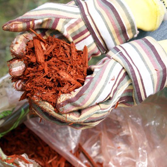 Free Wood Mulch! Some for Me, Some for You - Organic Gardening - MOTHER EARTH NEWS