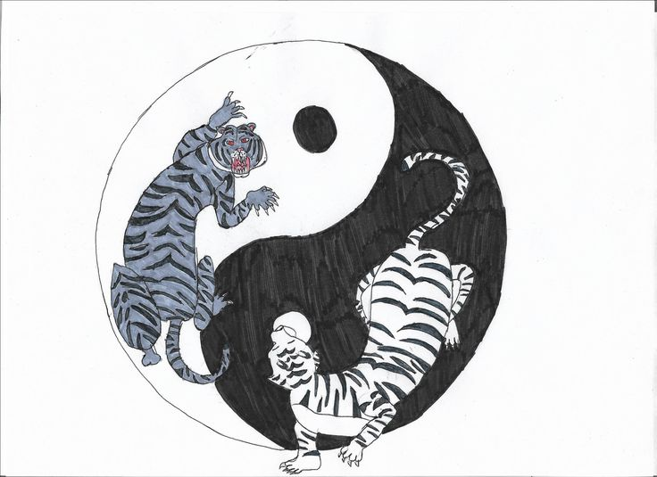 black tiger and white tiger