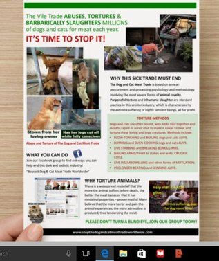 Dog and Cat meat trade image. Please, if you can, print these out and distribute them at pet adoption events, dog parks, any place ppl care about dogs and cats. Thanks.