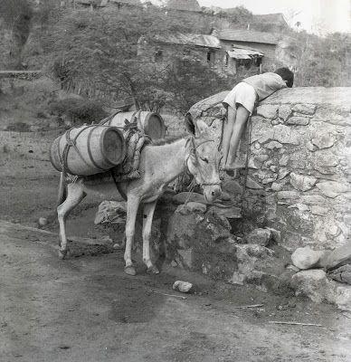 Fotografía: Nereo López - Usiacurí, Atlantico, Colombia 1953