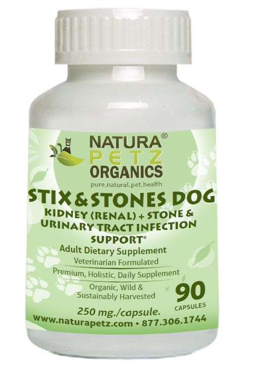 Stix and Stones - Kidney (Renal) + Stone & Urinary Tract Infection Support*