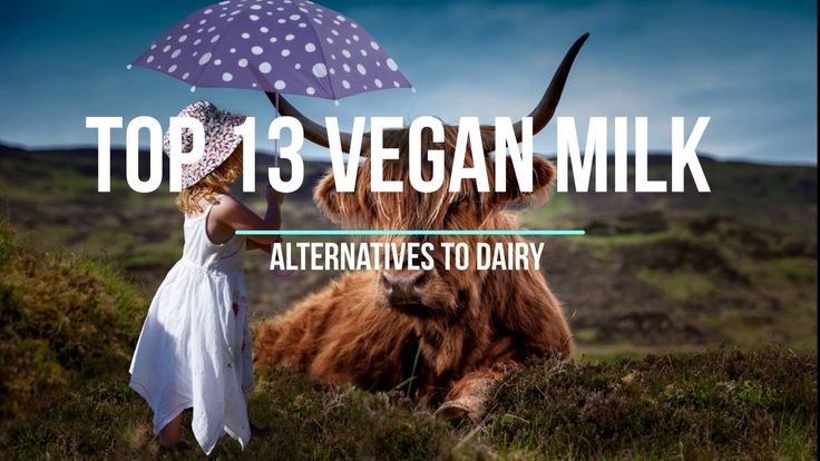 Top 13 Vegan Milk Alternatives to Dairy