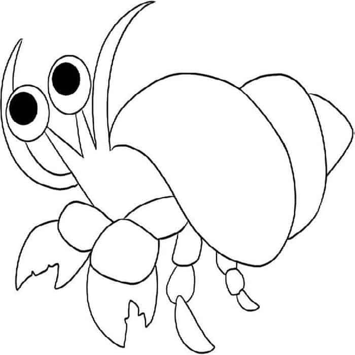 Hermit Crab Coloring Pages In 2020 Animal Coloring Pages Horse Coloring Pages Mandala Coloring Pages