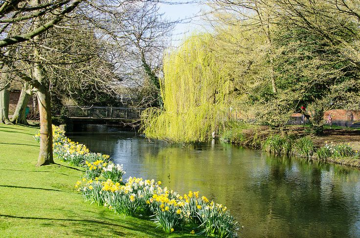 Beautiful Spring Day: Hertford Castle Grounds
