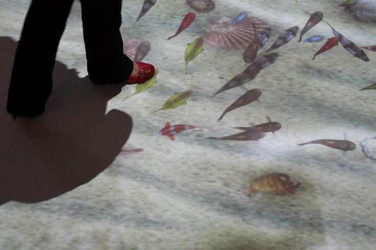 Pavimento interattivo Vimage, scenario pesci tropicali