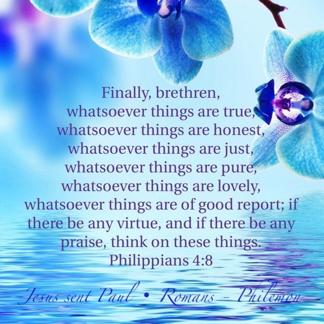 """Finally, brethren, whatsoever things are true, whatsoever things are honest, whatsoever things are just, whatsoever things are pure, whatsoever things are lovely, whatsoever things are of good report; if there be any virtue, and if there be any praise, think on these things."" ‭‭Philippians‬ ‭4:8‬ ‭KJV‬‬"