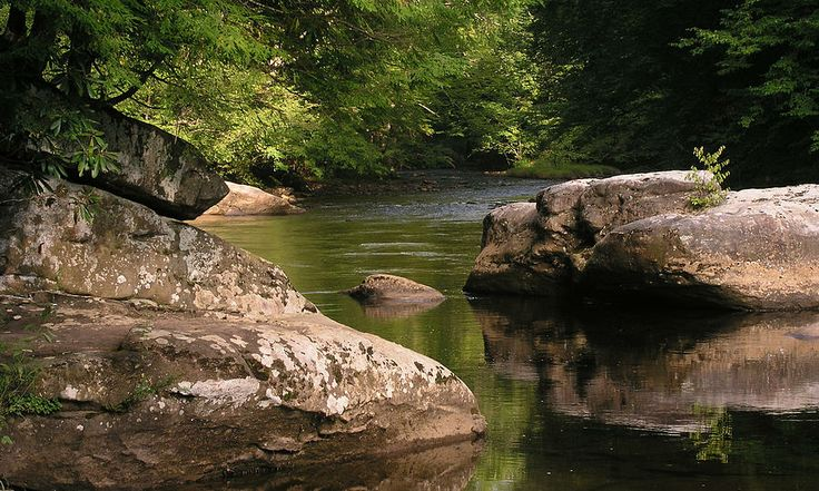 My absolute favorite trout stream the one my father for Trout fishing in wv