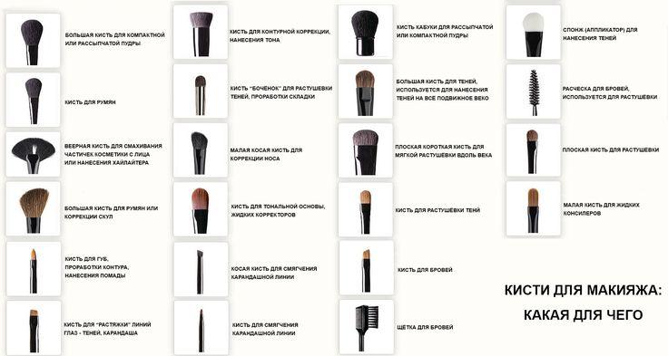 Кисти для макияжа - какая для чего предназначена и как пользоваться