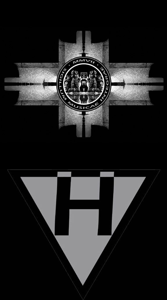 Logo / Vladimír Hirsch - The Assent To Paradoxon
