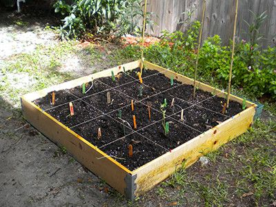square foot gardening square foot gardening is a great way to grow herbs and 29212