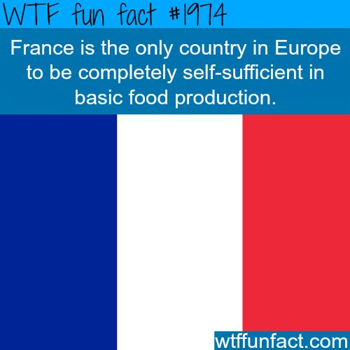 Facts about France - WTF fun facts