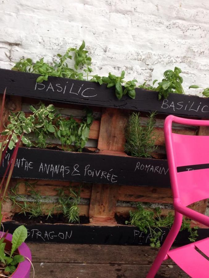 les 31 meilleures images du tableau plantes aromatiques au balcon sur pinterest jardin d. Black Bedroom Furniture Sets. Home Design Ideas