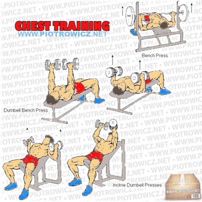Katheryn Winnick Workout | Celebrity Workout Routines ...