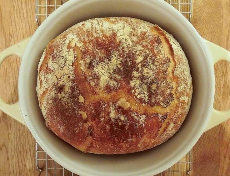 Home made wheat bread