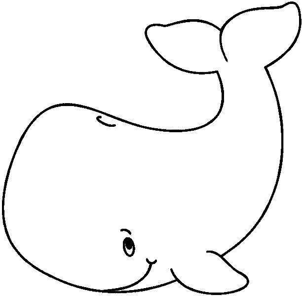 50+ best ballenas images by hilda barrantes on Pinterest | Collar ...