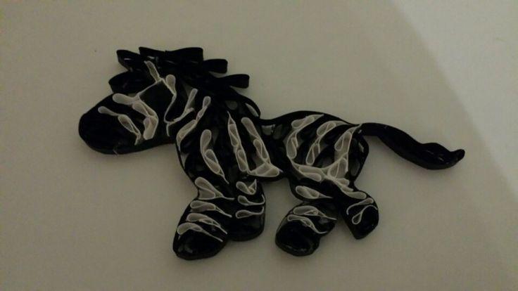 Quillet zebra