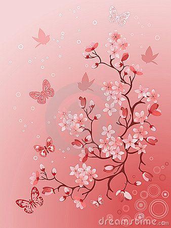 Cerisier Japonais Photos libres de droits - Image: 12913728