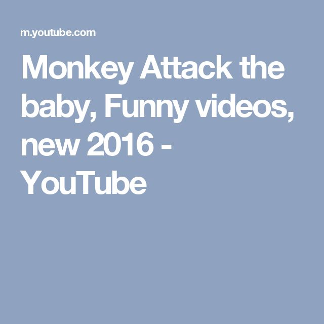 Monkey Attack the baby,   Funny videos, new 2016 - YouTube