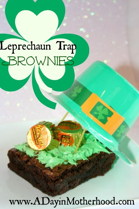 how to catch a leprechaun trap