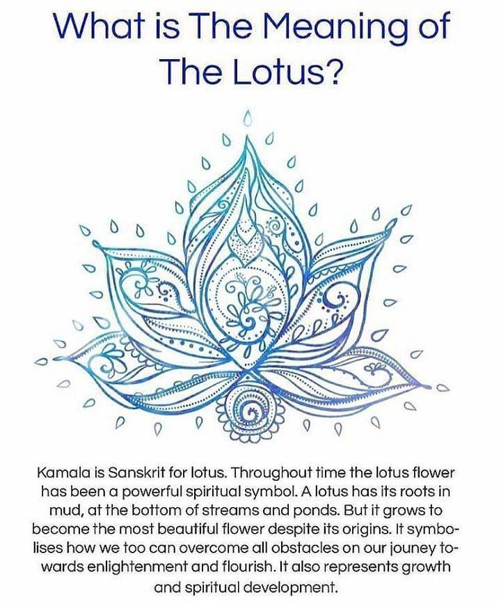 Very Beautiful Symbol Symbol Lotus Flower Kamala Sanskrit Spiritual Spiritualsymbol Spiritualdev Spiritual Symbols Yoga Symbols Symbols And Meanings