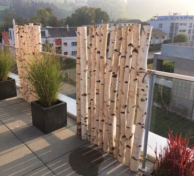 Birkenstamme Von Www Birkenshop Ch Gartengestaltung Birkenstamm Birkenholz Deko