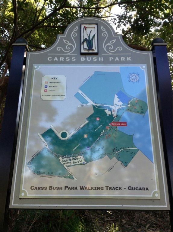 Get out and explore the best of Carss Park on foot. Picturesque bushland & waterviews. There are plenty of signs to point you in the right direction. #carsspark #walking #mcgrathstgeorge