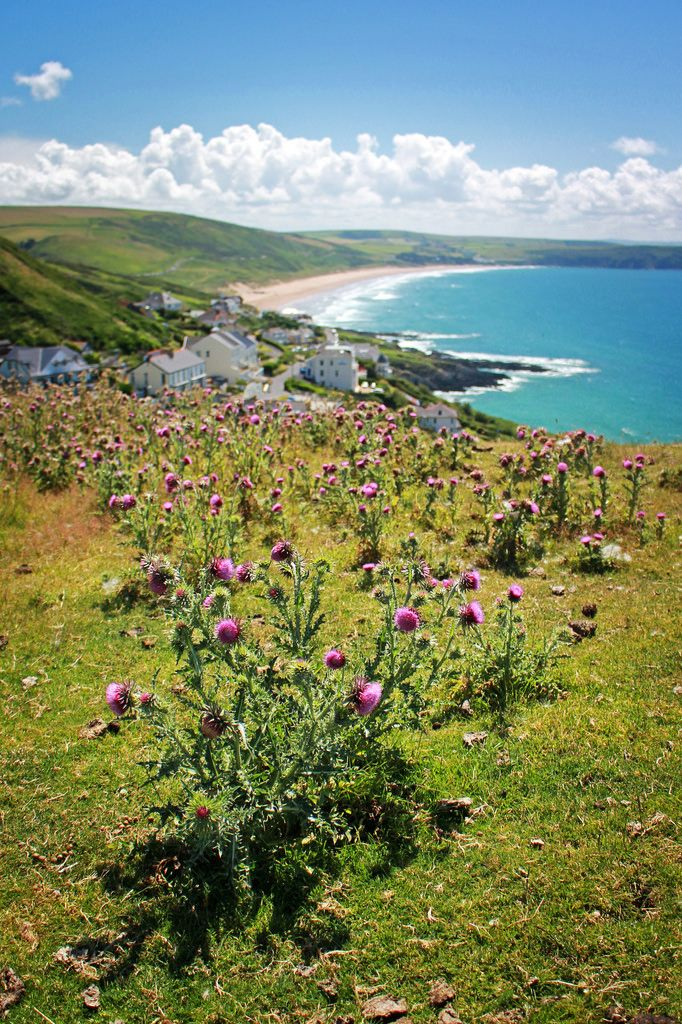 Woolacombe Bay, Devon, England by Tom Patterson via #Flickr