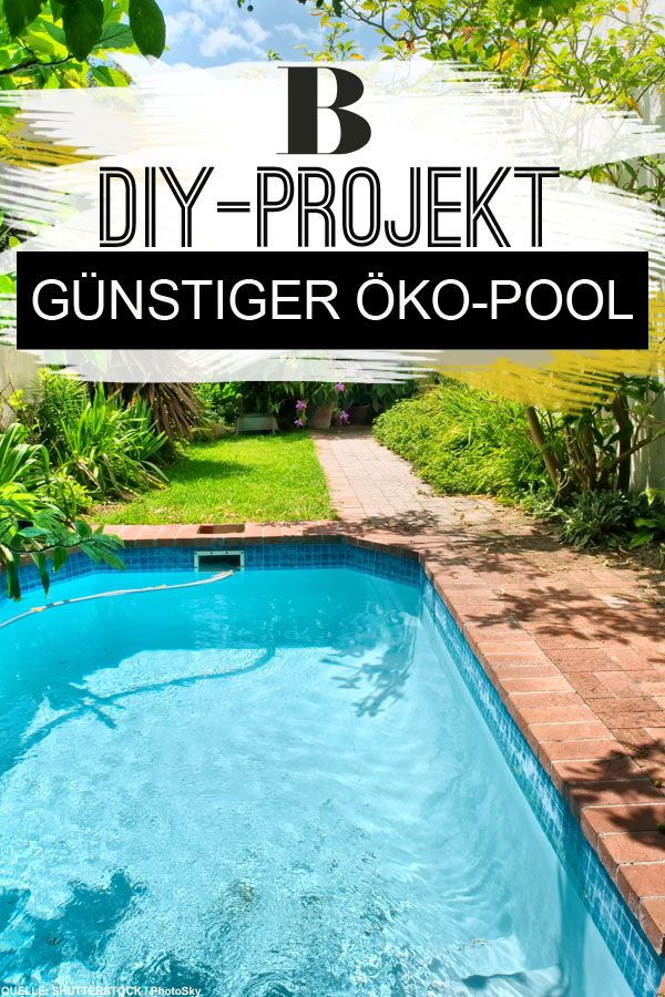 Oko Pool Selbst Bauen Familie Zeigt Wie Es Geht Dieser Swimming