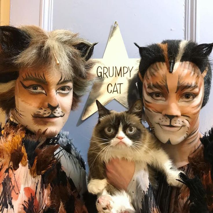 "Grumpy Cat Joins the Broadway Musical ""Cats"" for a Purrfect Performance"