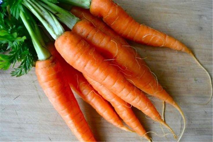 Ουισκόνσιν:Το πλήρες γονιδίωμα του καρότου κατάφεραν να διαβάσουν για πρώτη φορά οι επιστήμονες, ρίχνοντας φως στην εξέλιξή του, στο πορτοκαλί χρώμα του και στη θρεπτική αξία του. Η...
