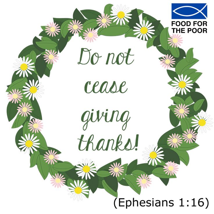 Do not cease giving thanks! (Ephesians 1:16) Receive inspiration delivered to your inbox Monday - Friday: www.foodforthepoor.org/verse #inspiration #verseoftheday #bibleverse #bible #prayer #prayeroftheday #foodforthepoor