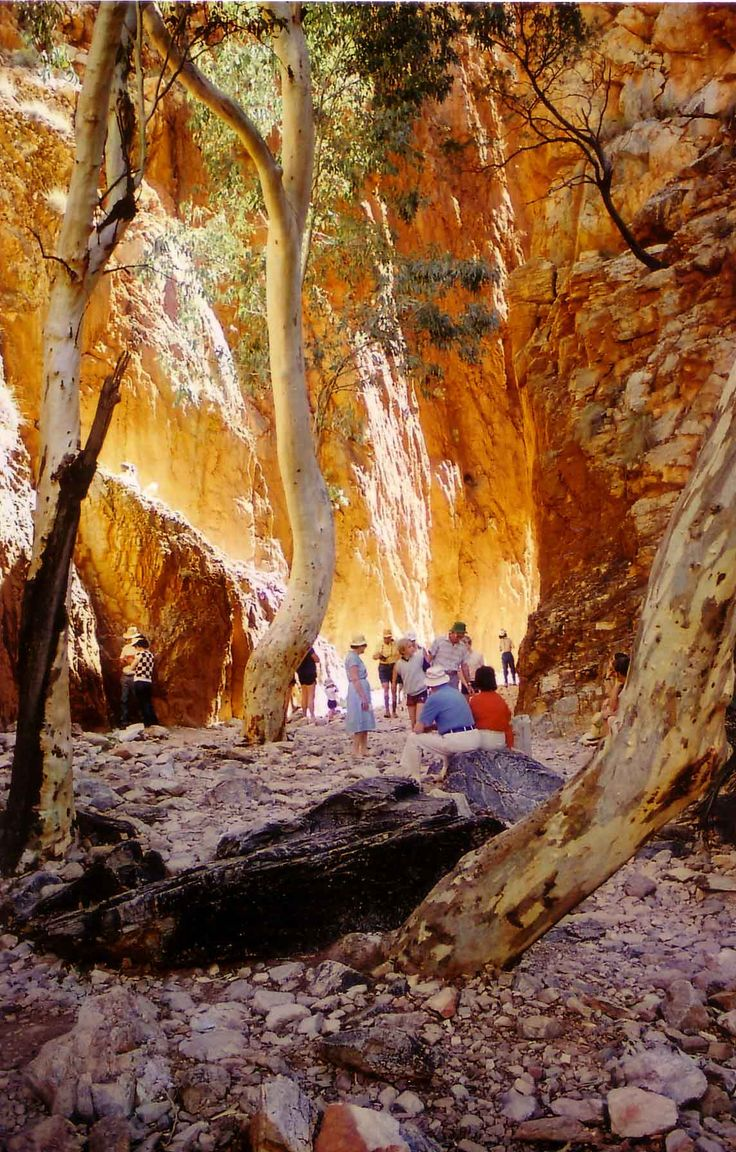 Central Australia Stanley chasam