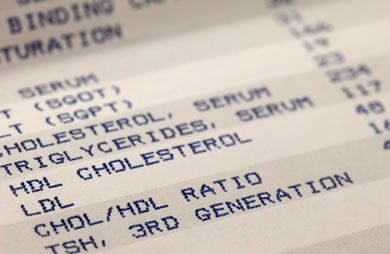 What Causes High Cholesterol?