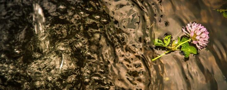 L'acqua… il filo conduttore della valle!  Das Wasser…der Leitfaden des Tals!