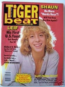 I had a subscription to Tiger Beat...mainly for Leif Garrett and Shaun Cassidy posters for my wall.