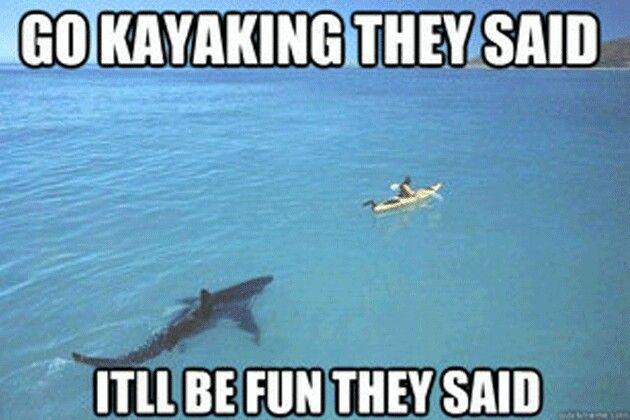 Hilarious Memes Of The Week : Kayaking shark jokes pinterest