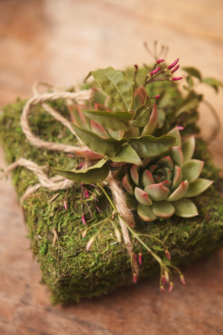 Moss covered ring box with succulent