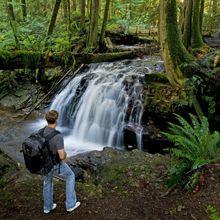 Hiking & Trails | Sunshine Coast BC | Sunshine Coast Tourism - Official Site