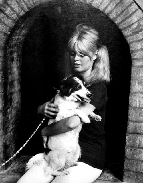 Same birthday! NAME: Brigitte Anne-Marie Bardot OCCUPATION: Animal Rights Activist, Film Actress BIRTH DATE: September 28, 1934 (Age: 78) PLACE OF BIRTH: Paris, France ORIGINALLY: Camille Javal ZODIAC SIGN: Libra less about Brigitte BEST KNOWN FOR  Brigitte Bardot is known for the 'sex kitten' image she projected in her early films, which set box-office records and made her an international star.