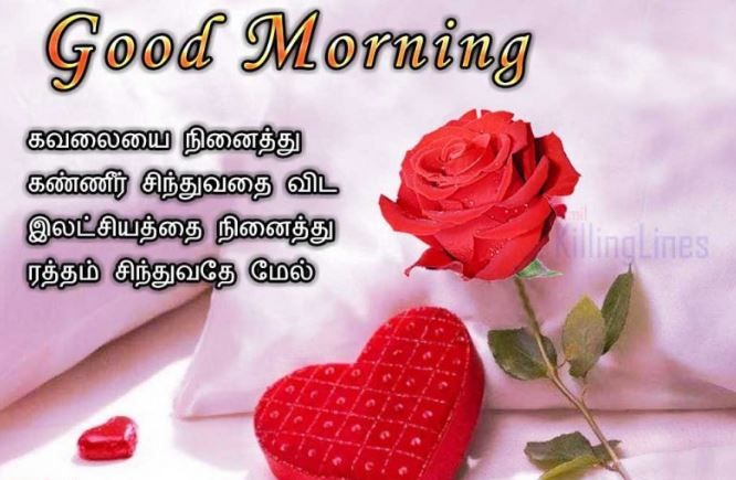 Top 100 Good Morning Images In Tamil Pics Good Morning Tamil Kavithai Good Morning Images Morning Images Good Morning Sunday Images