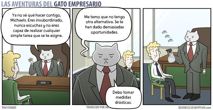 Las Aventuras Del Gato Empresario.