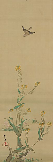 February - Sakai Hōitsu (1761-1828) - Birds and Flowers of the Twelve Months